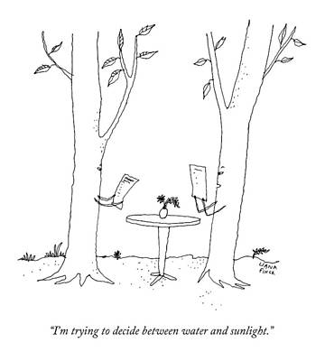 Two Trees Look At Restaurant Menus Poster