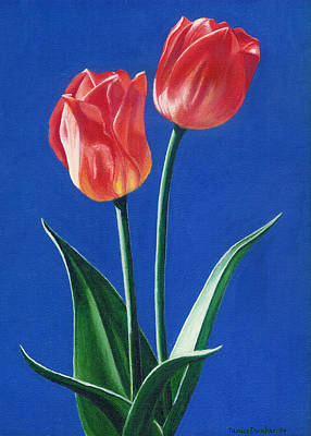 Two Tulips Poster by Janice Dunbar