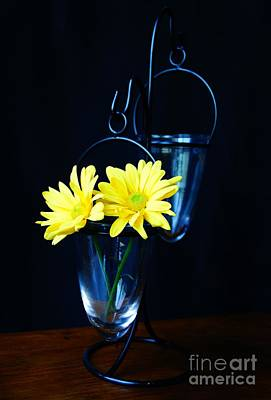 Two Yellow Daisies Poster by Kerri Mortenson