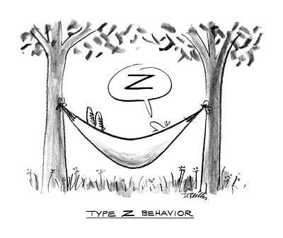 Type Z Behavior Poster by Donald Reilly
