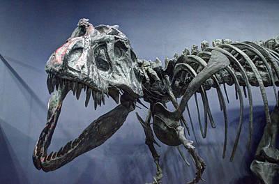 Tyrannosaurus Jane Poster