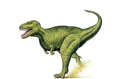 Tyrannosaurus Rex Poster by Deagostini/uig