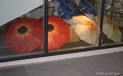 Umbrellas In The Window Poster by Bill Spittle