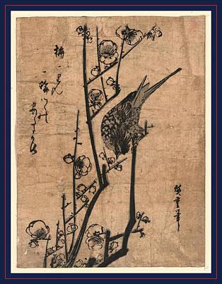 Ume Ni Uguisu, Bush Warbler On A Plum Branch Poster