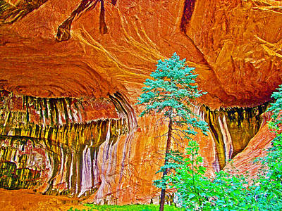 Under The Double Arch Alcove Near Taylor Creek Trail In Kolob Canyons In Zion National Park-utah Poster