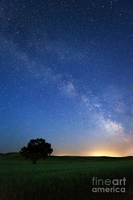 Under The Milkyway Poster by Beve Brown-Clark Photography