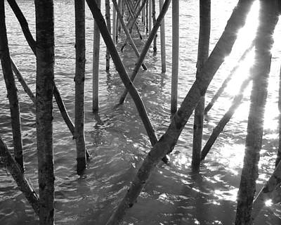 Under The Pier Poster by Ramona Johnston