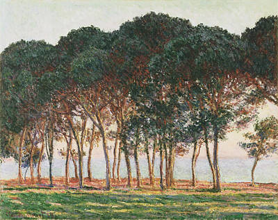 Under The Pines. Evening Poster by Claude Monet