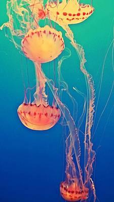 Under The Sea Poster by Lynsie Petig