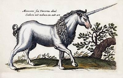 Unicorn Poster by Paul D Stewart