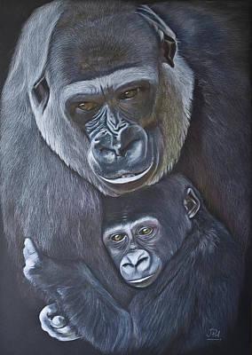 United - Western Lowland Gorillas Poster