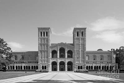 University Of California Los Angeles Royce Hall Poster by University Icons