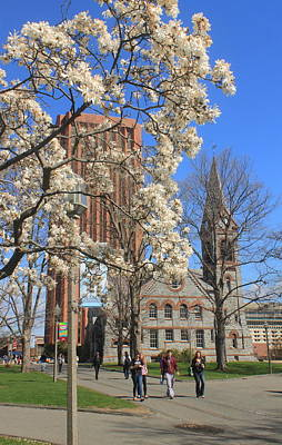 University Of Massachusetts Old Chapel And Library In Spring Poster by John Burk