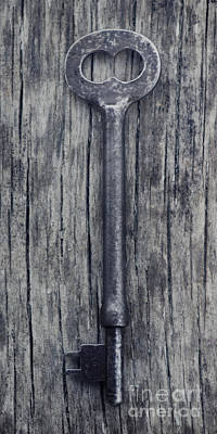 Unlock Your Dreams Poster by Priska Wettstein