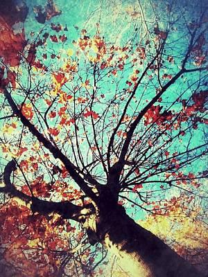 Untitled Tree Web Poster by Juliann Sweet
