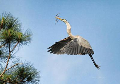 Up To The Nest Poster by Deborah Benoit