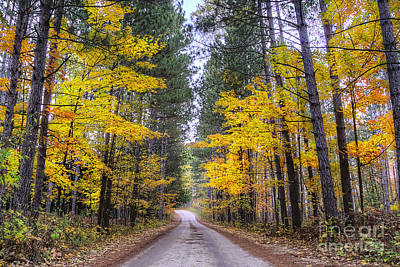 Upper River Road In Fall Poster