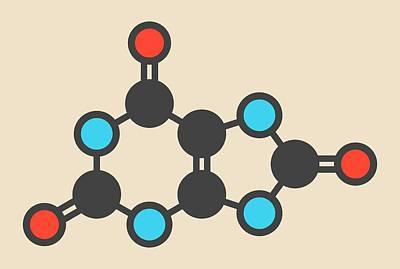 Uric Acid Molecule Poster by Molekuul