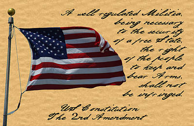 Us Constitution 2nd Amendment Flag Poster by Robyn Stacey