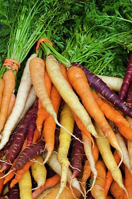 Usa, Georgia, Savannah, Fresh Carrots Poster by Joanne Wells