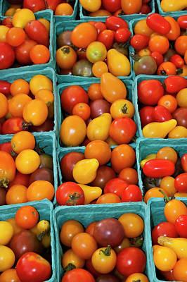 Usa, Georgia, Savannah, Organic Cherry Poster by Joanne Wells