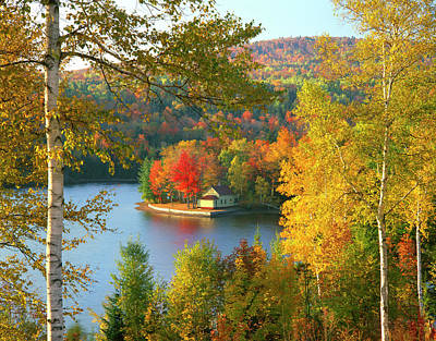 Usa, Maine, Wyman Lake, Summer Home Poster by Jaynes Gallery