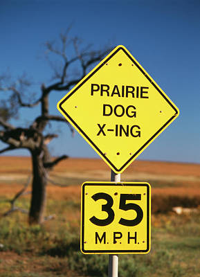 Usa, Oklahoma, Speed Limit Road Sign Poster by David Barnes