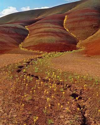 Usa, Oregon, Painted Hills In John Day Poster by Jaynes Gallery