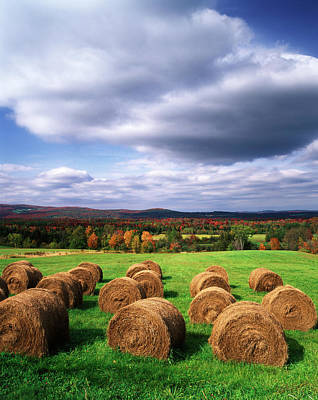Usa, Vermont, Westmore, Hay Bales Poster