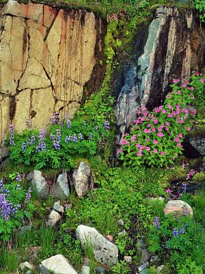 Usa, Washington State, Mount Rainier Poster by Jaynes Gallery