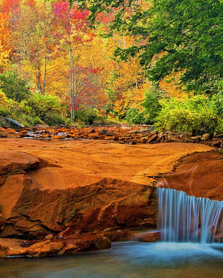 Usa, West Virginia, Douglass Falls Poster by Jaynes Gallery