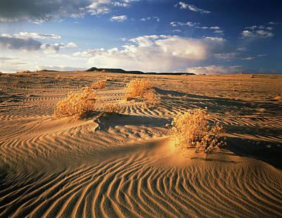 Usa, Wyoming, View Of Killpecker Sand Poster