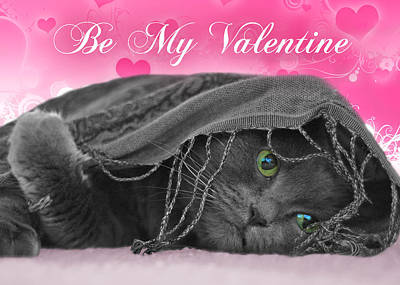 Valentine Cat Poster by Joann Vitali
