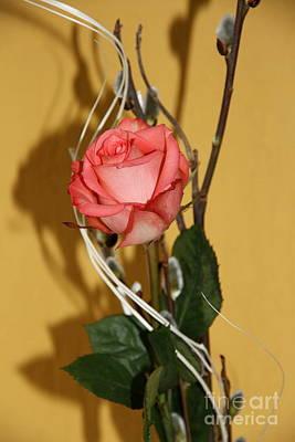Valentine's Rose II Poster