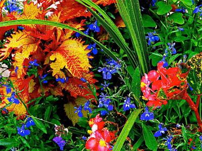 Van Gogh's Garden Poster