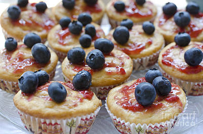 Vanilla Cupcakes With Fresh Blueberries Poster