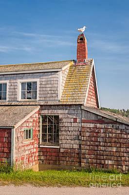 Vanishing Maine Poster by Scott Thorp
