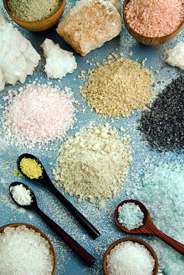 Various Types Of Salt Poster
