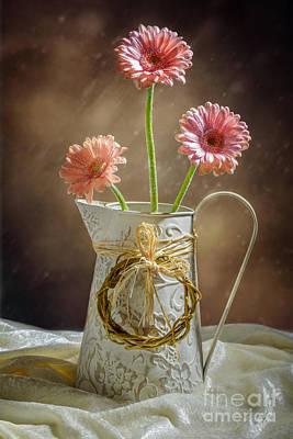 Vase Of Gerbera Flowers Poster by Amanda Elwell