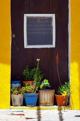 Vases On The Doorway Poster by Carlos Caetano