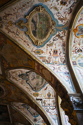 Vaulted Ceiling Of The Antiquarium Poster