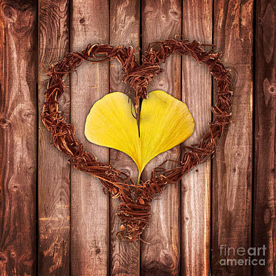 Vegetal Hearts Poster by Delphimages Photo Creations