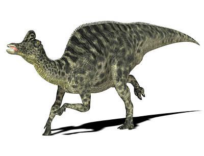 Velafrons Dinosaur Poster by Friedrich Saurer