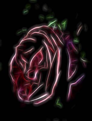 Poster featuring the digital art Velvet Rose 1 by William Horden