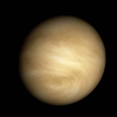 Venus Poster by Carlos Clarivan