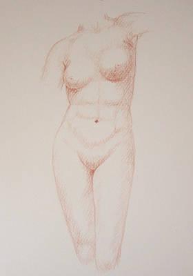 Female Torso #3 Poster by Deborah Dendler