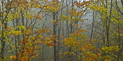 Vermont Autumn Trees Fog Mount Mansfield Panorama Poster by Andy Gimino