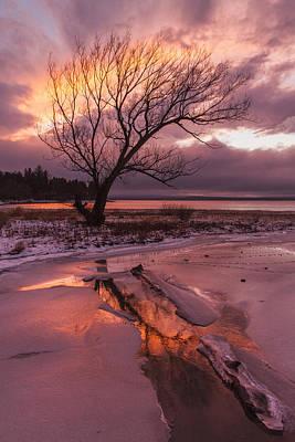 Winter- Charlotte Vt- Sunset-tree-silhouette  Poster