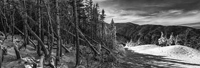 Vermont Winter Mount Mansfield Mountain Forest Snow Black And White Poster by Andy Gimino