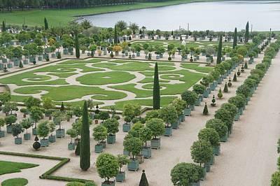 Versailles Garden Poster